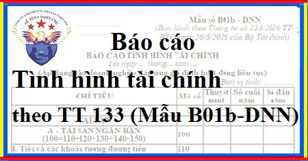 Cách lập báo cáo tính tài chính Mẫu B01b – DNN theo TT 133